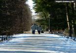 asheghaneh | عکس های عاشقانه