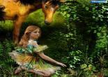honari | عکسهای جالب و هنری
