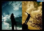 honari   عکسهای زیبا و هنری