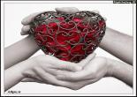 love | عکس عاشقانه